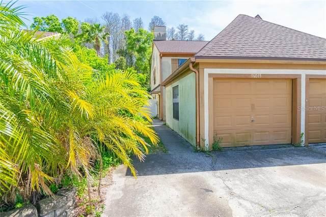 16015 Dawnview Drive, Tampa, FL 33624 (MLS #T3293497) :: Young Real Estate