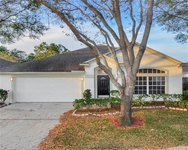 10727 Ayrshire Drive, Tampa, FL 33626 (MLS #T3293508) :: Griffin Group