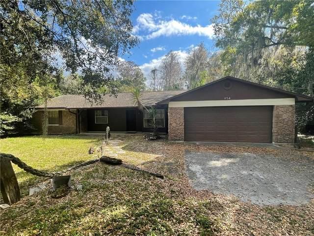 854 W Lutz Lake Fern Road, Lutz, FL 33548 (MLS #T3293634) :: Positive Edge Real Estate