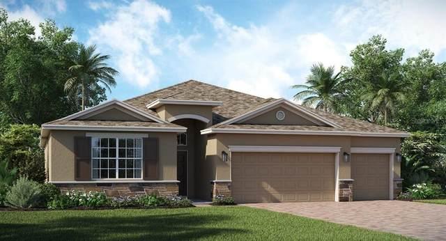 2349 Camden Park Avenue, Davenport, FL 33837 (MLS #T3293635) :: Bob Paulson with Vylla Home