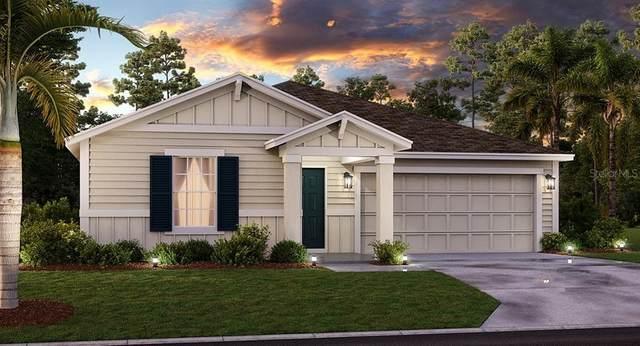 4881 Magnetite Loop, Mount Dora, FL 32757 (MLS #T3293653) :: Sarasota Property Group at NextHome Excellence