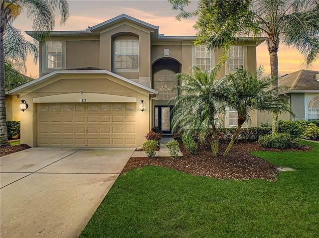 11429 Dutch Iris Drive, Riverview, FL 33578 (MLS #T3293667) :: Positive Edge Real Estate