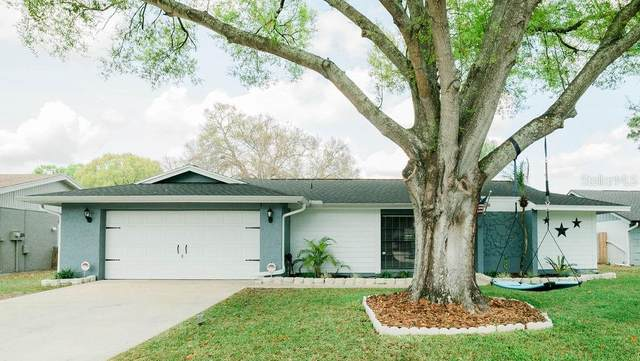 15509 Timberline Drive, Tampa, FL 33624 (MLS #T3293684) :: Bustamante Real Estate