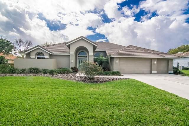 30302 Fairway Drive, Wesley Chapel, FL 33543 (MLS #T3293707) :: Griffin Group