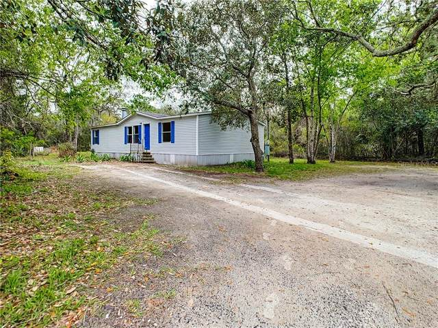 3388 Parlow Avenue, Spring Hill, FL 34606 (MLS #T3293712) :: Premium Properties Real Estate Services
