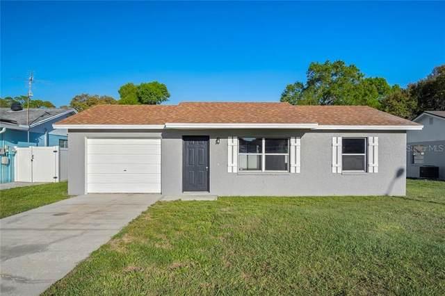 6233 Doe Circle W, Lakeland, FL 33809 (MLS #T3293744) :: Pepine Realty