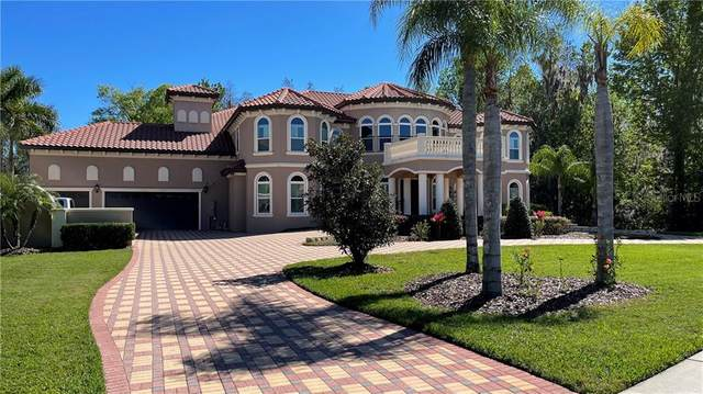 17923 Cachet Isle Drive, Tampa, FL 33647 (MLS #T3293814) :: Team Bohannon Keller Williams, Tampa Properties