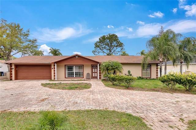 19223 Gunn Highway, Odessa, FL 33556 (MLS #T3293824) :: The Heidi Schrock Team