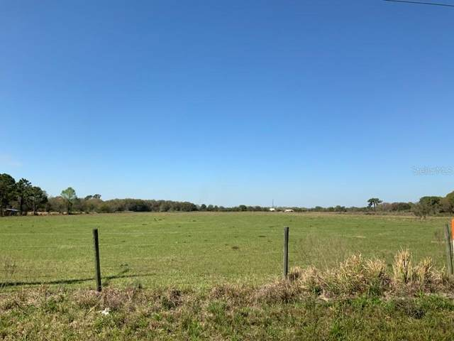 1 S 39 Highway, Lithia, FL 33547 (MLS #T3293861) :: The Robertson Real Estate Group
