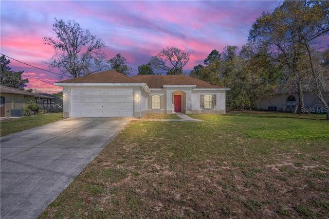 2312 Canfield Drive, Spring Hill, FL 34609 (MLS #T3293870) :: Realty One Group Skyline / The Rose Team