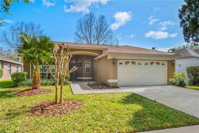 17709 Emerald Green Place, Tampa, FL 33647 (MLS #T3293917) :: Pepine Realty
