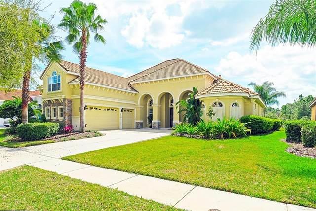 8323 Windsor Bluff Drive, Tampa, FL 33647 (MLS #T3293922) :: Carmena and Associates Realty Group