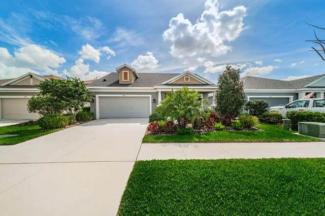7405 Futura Place, Apollo Beach, FL 33572 (MLS #T3293945) :: Griffin Group