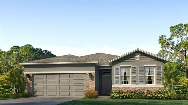 5200 Sunshine Drive, Wildwood, FL 34785 (MLS #T3293973) :: Armel Real Estate