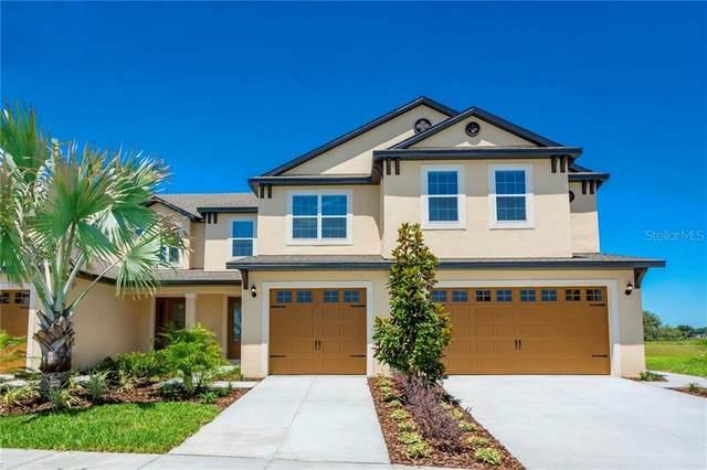 11256 Cay Spruce Way, San Antonio, FL 33576 (MLS #T3293998) :: The Duncan Duo Team