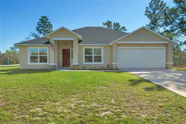 12188 Everglades Kite Road, Weeki Wachee, FL 34614 (MLS #T3294022) :: The Hustle and Heart Group