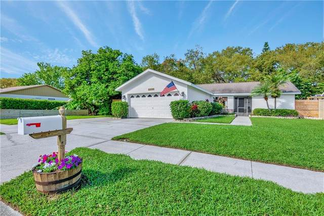 2238 Cypress Point Drive E, Clearwater, FL 33763 (MLS #T3294040) :: Delta Realty, Int'l.