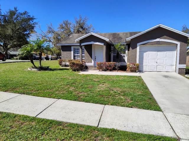 166 N Cervidae Drive, Apopka, FL 32703 (MLS #T3294089) :: Baird Realty Group
