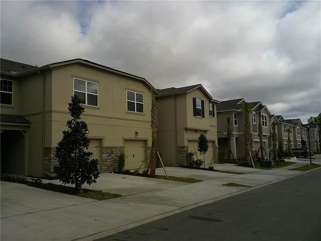 5945 Grand Sonata Avenue, Lutz, FL 33558 (MLS #T3294132) :: The Hustle and Heart Group