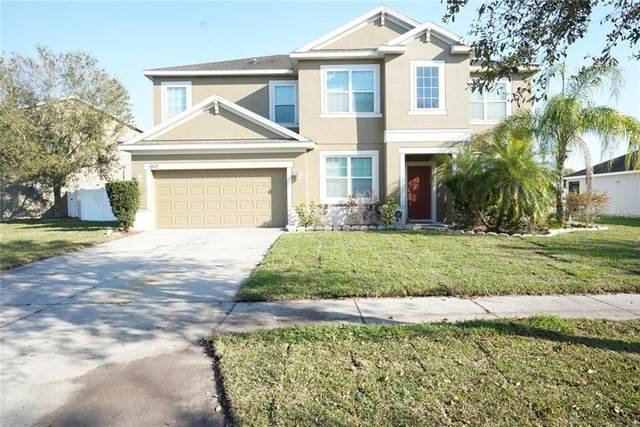 1517 Rhodeswell Lane, Dover, FL 33527 (MLS #T3294135) :: Sell & Buy Homes Realty Inc