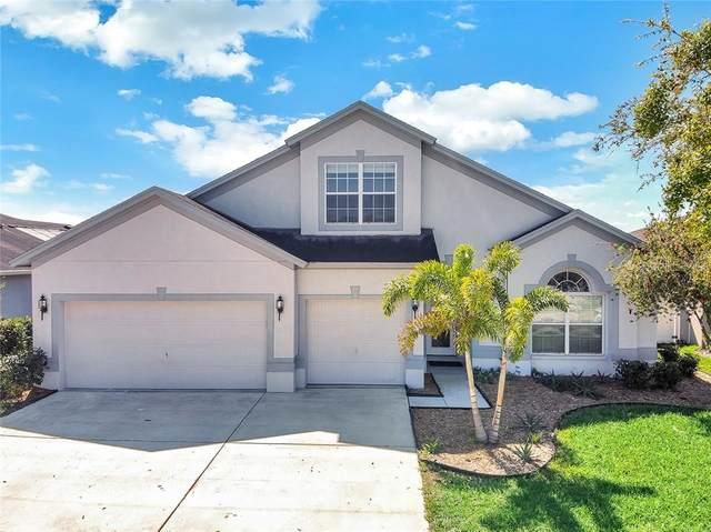 10905 Rockledge View Drive, Riverview, FL 33579 (MLS #T3294138) :: Griffin Group