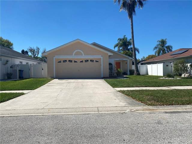 13208 Pine Creek Circle, Riverview, FL 33579 (MLS #T3294218) :: Charles Rutenberg Realty