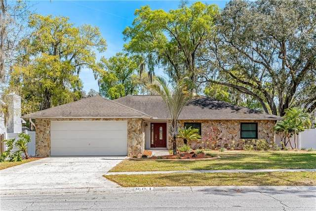 601 Angelica Pl, Brandon, FL 33510 (MLS #T3294233) :: The Duncan Duo Team
