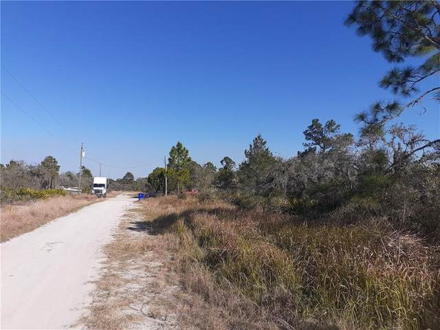 238 Tanager Avenue, Sebring, FL 33870 (MLS #T3294316) :: The Light Team