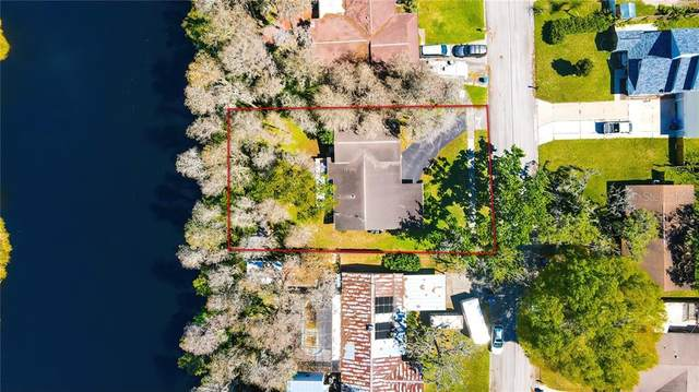 19207 Alice Circle, Lutz, FL 33558 (MLS #T3294442) :: Tuscawilla Realty, Inc