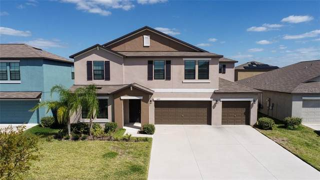 14027 Arbor Pines Drive, Riverview, FL 33579 (MLS #T3294492) :: Tuscawilla Realty, Inc