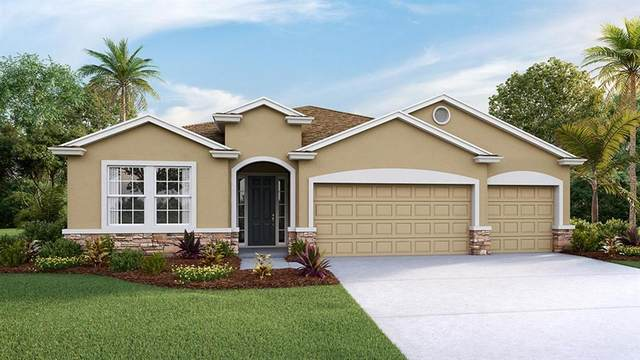13514 Golden Lime Avenue, Spring Hill, FL 34609 (MLS #T3294840) :: Rabell Realty Group