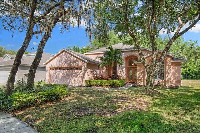 13503 Spotted Fawn Place, Tampa, FL 33626 (MLS #T3294918) :: The Duncan Duo Team