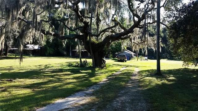 5509 Peach Avenue, Seffner, FL 33584 (MLS #T3295160) :: Armel Real Estate