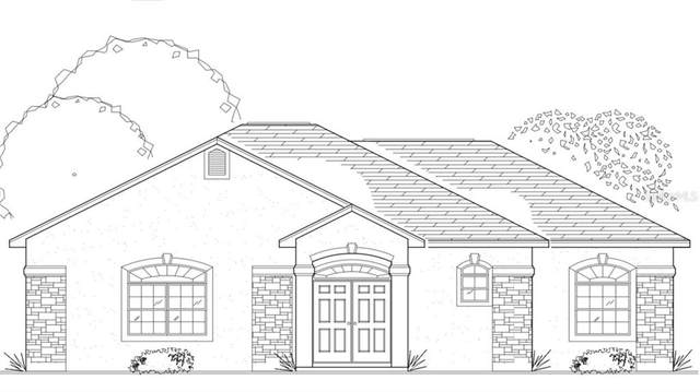 1 Hilton Drive, Brooksville, FL 34601 (MLS #T3295167) :: Rabell Realty Group