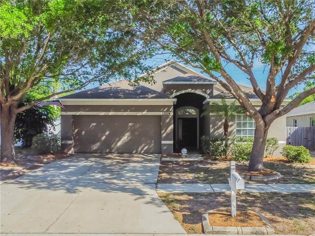 13204 Beechberry Drive, Riverview, FL 33579 (MLS #T3295387) :: The Duncan Duo Team