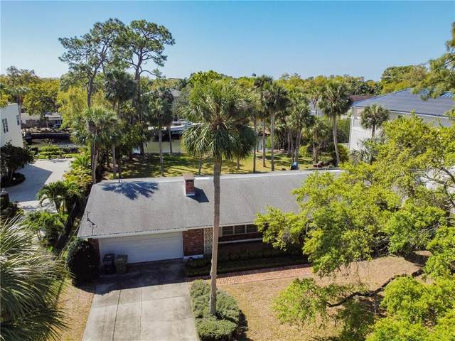 2631 N Dundee Street, Tampa, FL 33629 (MLS #T3295627) :: The Duncan Duo Team
