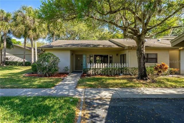 180 Joanne Place, Oldsmar, FL 34677 (MLS #T3295747) :: Zarghami Group