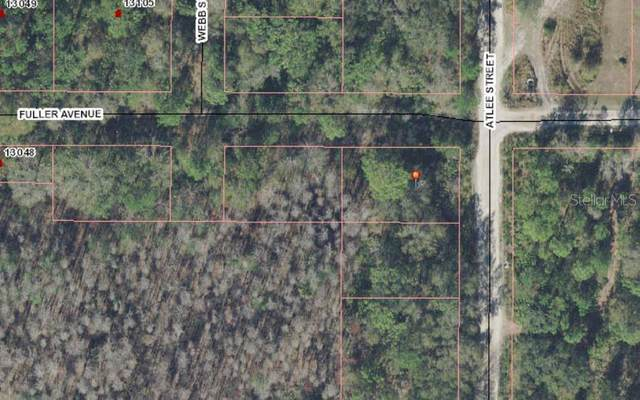 0 Atlee Street, New Port Richey, FL 34654 (MLS #T3295815) :: Vacasa Real Estate