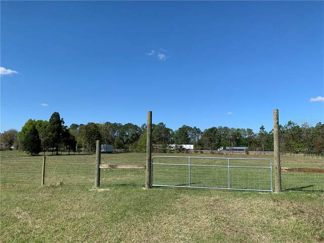 14601 Sherrod Croft Lane, Dade City, FL 33525 (MLS #T3296271) :: Prestige Home Realty