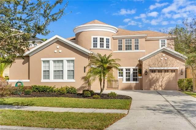 Tampa, FL 33647 :: Aybar Homes