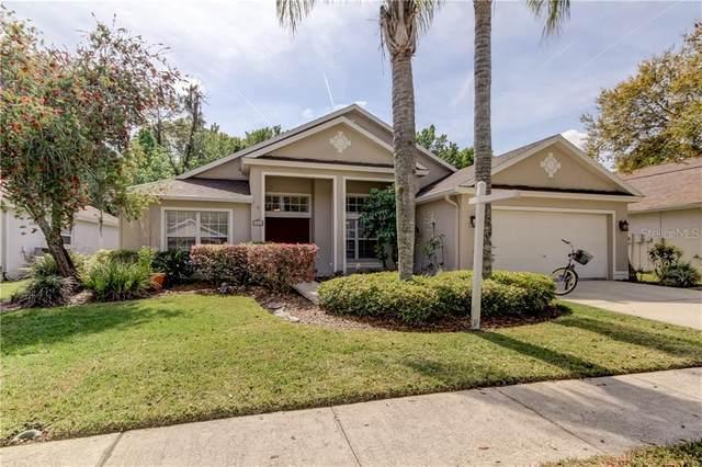 8261 Swann Hollow Drive, Tampa, FL 33647 (MLS #T3296703) :: Team Bohannon Keller Williams, Tampa Properties