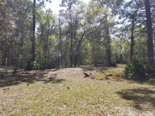 7614 W County Line Road, Odessa, FL 33556 (MLS #T3296722) :: Premier Home Experts