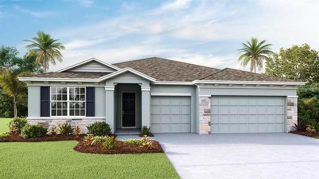 7092 Steer Blade Drive, Zephyrhills, FL 33541 (MLS #T3297119) :: Everlane Realty