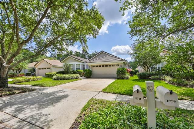 Tampa, FL 33647 :: Pristine Properties