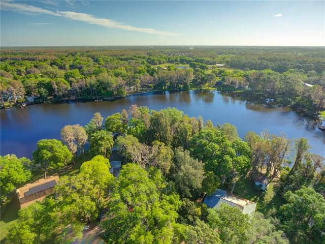 14537 & 14541 Halfway Lane, Odessa, FL 33556 (MLS #T3297269) :: Positive Edge Real Estate