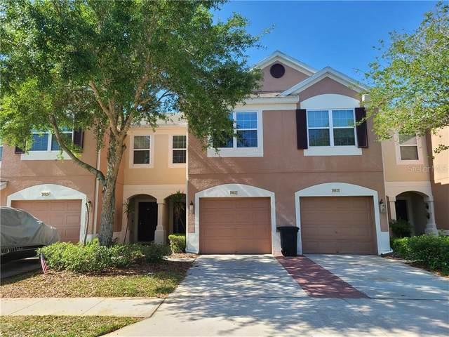 26622 Castleview Way, Wesley Chapel, FL 33544 (MLS #T3297435) :: Vacasa Real Estate