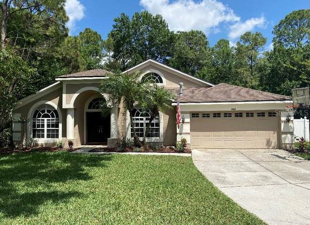 8102 Kendelwick Court, Tampa, FL 33647 (MLS #T3297645) :: The Nathan Bangs Group