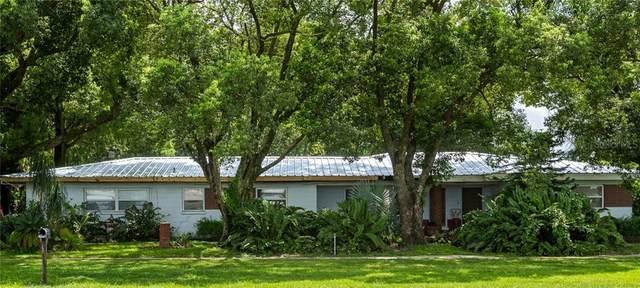4708 James L Redman Parkway, Plant City, FL 33567 (MLS #T3297741) :: Griffin Group