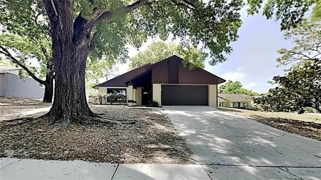 5736 Westview Drive, Orlando, FL 32810 (MLS #T3297898) :: Vacasa Real Estate