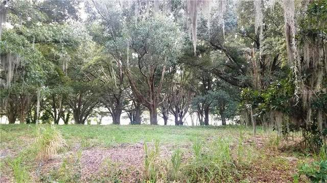 2005 Lake Fischer Cove, Gotha, FL 34734 (MLS #T3298178) :: Bustamante Real Estate